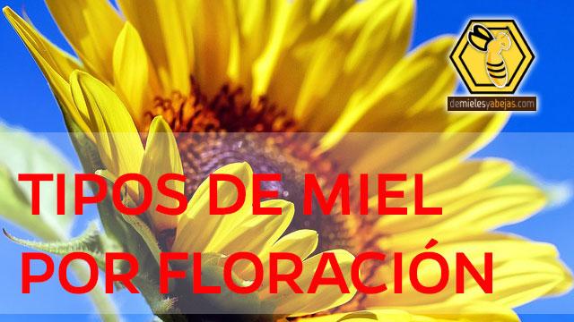 ¿CUÁLES SON LA FLORES PARA LA MIEL? | MIEL | De Mieles y Abejas