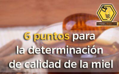 6 puntos de para la determinación de calidad de la miel